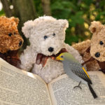 Enjoy a story from Fables Found: The Honeyguide